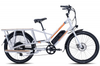 Rad Power Bikes RadWagon 3